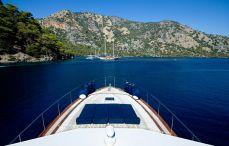 Blue Voyages
